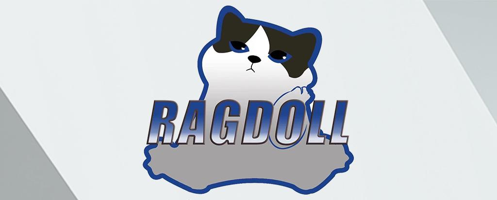 QH Sports Dota Series 1 playoff participant: Ragdoll